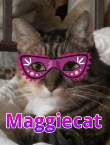 maggiecat